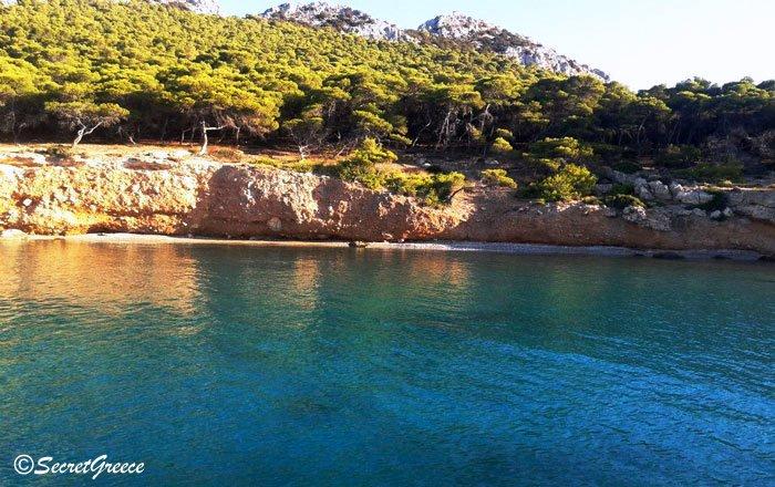 Moni_Island