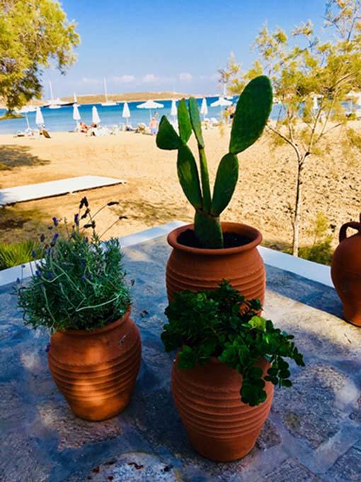 Paros Park Monastiri beach